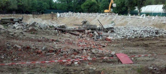 Eco-Civica: Dezastru după dezastru în Bucureşti. 138 de arbori maturi vor fi puşi la pământ