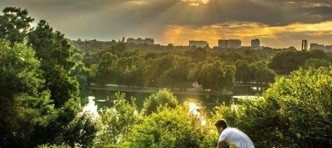 Presiuni pentru eliberarea unor avize de defrişare vizând ridicarea unor construcţii în Parcul Tineretului – interviu cu Dan Trifu, vicepreședinte Fundația Eco-Civica