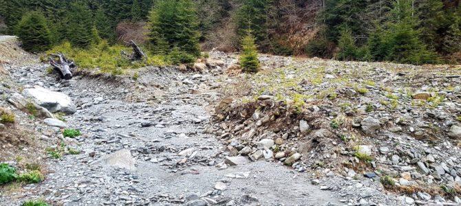 Nici un fir de apă pe un râu de munte!!!